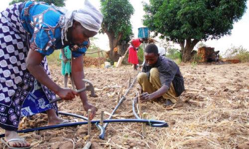 Los nuevos modelos de ayuda y la tecnología israelí pueden ayudar a alimentar al mundo